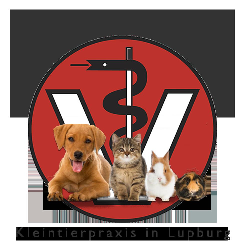 logo ines schmid